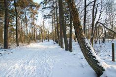 *Warm wandelen in de winter* De winter komt eraan! We geven tips over hoe je je goed kunt kleden in de koude dagen zodat je comfortabel kunt wandelen en genieten van het moois in dit seizoen. Snow, Tips, Outdoor, Outdoors, Outdoor Games, Outdoor Living, Bud, Let It Snow, Hacks