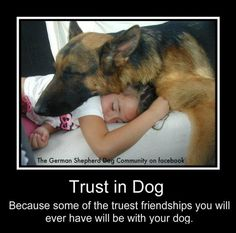 Trust in Dog: Because some of the truest friendships you will ever have will be with your dog. metalhead684