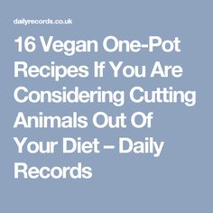 16 Vegan One-Pot Recipes If You Are Considering Cutting Animals Out Of Your Diet – Daily Records