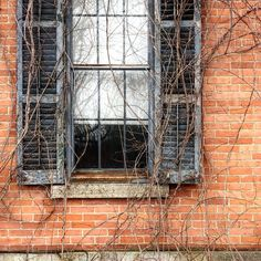 Another shot from the abandoned house. How about those chippy shutters and that brick? Vintage Instagram, Abandoned Houses, Shutters, Rustic Wood, Brick, America, Tv, Building, Blinds