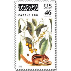 Vintage Chipmunk Illustration Stamps