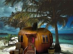 ~*Halloween on the beach~~Perfect~ #Beach #Hotels http://searchcheaphotelsnow.com