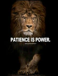 Patience is a ×Virtrue!, .