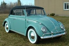 1961 Turquoise Beetle love-in-the-form-of-carsWant this...just need the pink, purple, yellow and orange flowers on it.