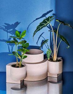 Tortuga-Living-Platform-Vessel-Planters-4 - Design Milk Outdoor Gardens, Indoor Outdoor, Indoor Farming, Bauhaus Architecture, Milk Shop, Concrete Design, 2020 Design, Shop Signs, Geometric Shapes