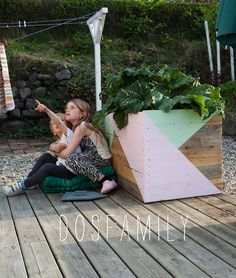 Rhubarb plants in DIY flower box in our garden. Painted in pink and green triangles beckers
