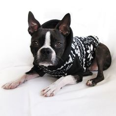 Nordic Fleece Dog Sweater | Black & White Snowflake Fleece Dog Hoodie | Boston Terrier/French Bulldog/Pug by CozyDawg on Etsy https://www.etsy.com/listing/205483331/nordic-fleece-dog-sweater-black-white