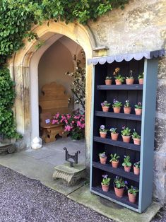 Gresgarth's entryway with auricula theatre Backyard Garden Design, Backyard Retreat, Plant Theatre, Dream Garden, Home And Garden, Tiny Garden Ideas, Primula Auricula, Outdoor Grill Station, Theater