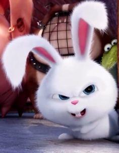 Rabbit Wallpaper, Bear Wallpaper, Wallpaper Iphone Cute, Snowball Rabbit, Cute Bunny Cartoon, Bunny And Bear, Secret Life Of Pets, Cute Doodles, Cute Cartoon Wallpapers