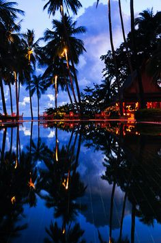 Purple reflections, dusk in Phuket, Thailand