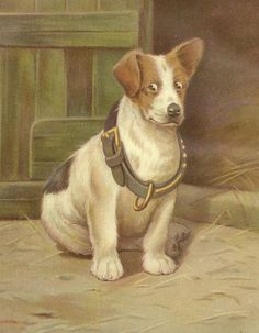 Jack Russell Terrier A Misfit Original Color by TheOldBarnDoor, $10.00