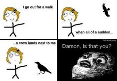 Haha I have crows around my house all the time ...hmm I wonder