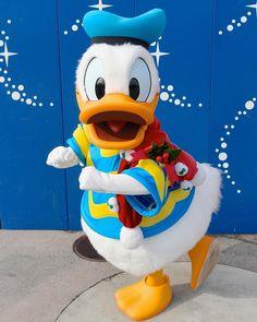 Disney Fan, Disney Dream, Disney Love, Disney Magic, Disney Parks, Disney Pixar, Disney Characters Costumes, Disney World Characters, Disney Best Friends