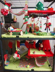 To cute Christmas rat cage idea