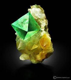 Fluorite on Quartz from Riemvasmaak, South Africa Cool Rocks, Beautiful Rocks, Minerals And Gemstones, Rocks And Minerals, Mineral Stone, Rocks And Gems, Stone Jewelry, Stones And Crystals, South Africa