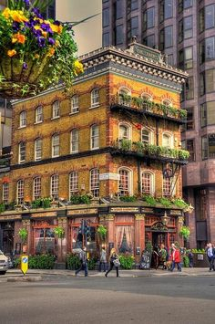 Albert Pub in London  That type of building I like.. its alive