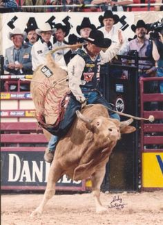 Attend a Rodeo with the family. Only a hand full of bull riders to ever successfully rode the infamous bull, Bodacious. Bodacious even has his own book.