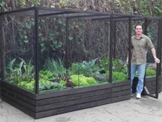 building garden containers for vegetables   ... ready-made organic vegetable gardens that will be on sale at the show