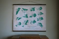 Hand Shadow Puppet Chart - Sideshow Sign Co. Shadow Puppets With Hands, Expressions Of Sympathy, Hand Shadows, Hand Puppets, Vintage Posters, Kids Playing, My Arts, Arts And Crafts, Illustration