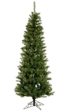 75 PreLit LED Salem Pine Pencil Artificial Christmas Tree  Clear Lights *** Check this awesome product by going to the link at the image.