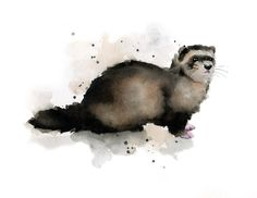 Ferret Watercolor Painting Art Print от DJRogersWatercolors