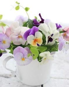 Cup of Purple Lavender White and Yellow Pansies