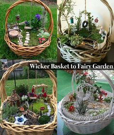 Clever Use of Wicker Basket to Grow Charming Fairy Garden Inside of It. Clever Use of Wicker Basket to Grow Charming Fairy Garden Inside of It. Fairy Garden Plants, Mini Fairy Garden, Fairy Garden Houses, Gnome Garden, Beautiful Fairies, Beautiful Gardens, Garden Basket, Pot Jardin, Fairy Furniture