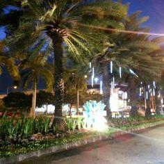 #クリスマス #クリスマスライト #christmas #christmaslight #lights #philippines #フィリピン
