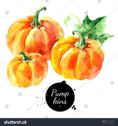 Holiday isolated painted illustration on white background Royalty free image illustration Watercolor Flowers Tutorial, Watercolor Fruit, Watercolor Paintings, Watercolour, Pumpkin Canvas Painting, Food Painting, Food Drawing, Fruit Art, Happy Thanksgiving
