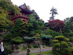 Japanese Tea Garden in San Francisco, CA