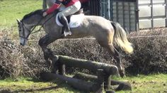 Seamus competing at hunter trials in Irishtown
