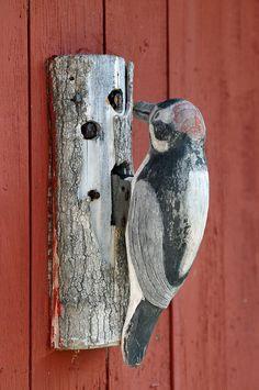 woodpecker knocker :)  Nova Scotia