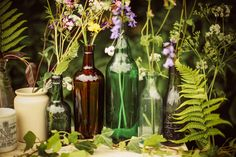 Vintage green and brown glass bottles filled with wild flowers and ferns  This is a fantastic website for ideas
