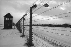 Auschwitz vu par Raymond Depardon