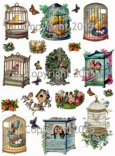 Vintage Images of Birds and Bird Cages Collage Sheet                                                                                                                                                                                 Más
