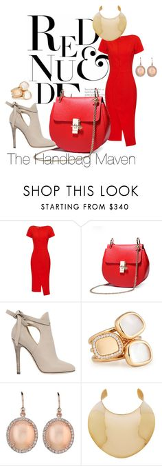 """""""Red and Nude Today"""" by thehandbagmaven ❤ liked on Polyvore featuring Antonio Berardi, Jimmy Choo, Roberto Coin, Irene Neuwirth and Balmain"""