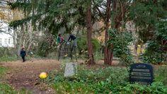 Spielen zwischen Gräbern: Kinder auf einem Klettergerüst im Berliner Leise-Park