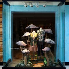 mushroom window shop - Cerca con Google