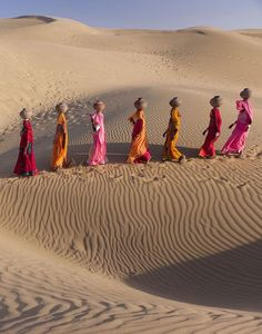 The Great Thar desert is found in northwest India. It has stretches of sand dunes dotted with gravel plains. The vegetation and animal life is very rich and is home to animals such as the Indian gazelle and camels. It is also one of the most populated deserts in the world, with people farming the many crops grown there and looking after their cattle.