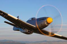 North American P-51 Jim Raeder