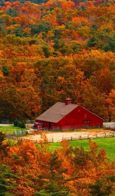 Beautiful Fall Foliage & red barn / - - Your Local 14 day Weather FREE >… Autumn Scenes, Seasons Of The Year, Fall Pictures, Old Barns, Country Barns, Country Fall, Country Living, Belle Photo, Autumn Leaves