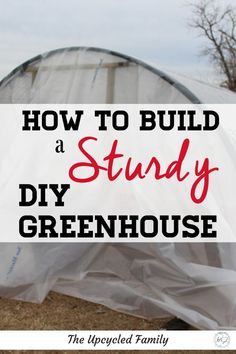 How to build a greenhouse for cheap that's still sturdy. The easy DIY greenhouse idea is made from wood and livestock panels. Winter Greenhouse, Build A Greenhouse, Greenhouse Ideas, Cheap Greenhouse, Outdoor Greenhouse, Outdoor Plants, Homemade Greenhouse, Urban Homesteading, Cloudy Day