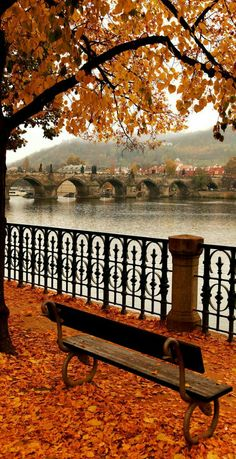 22 Reasons why Czech Republic must be in the TOP of your Bucket List AmonGraf is part of Autumn scenery - 14 Famous Charles Bridge in Autumn Melancholy, Prague Czech Republic Beautiful World, Beautiful Places, Beautiful Pictures, Countries To Visit, Places To Visit, European Countries, Wallpaper Inspiration, Autumn Aesthetic, Nature Aesthetic