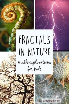 Fractals for kids: a