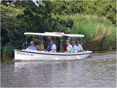Discover the best boat trips in Norfolk. FREE online guided tour includes seal trips, cruises and Norfolk Broads river trips. Norfolk Holiday, Electric Eel, Norfolk Broads, Best Boats, Pontoon Boat, Bird Watching, Tour Guide, Solar Power, Cruise
