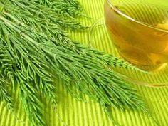 Explicamos las propiedades adelgazantes, diuréticas, depurativas, antiinflamatorias y estéticas de esta excelente planta que mejora nuestra salud y belleza