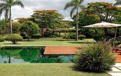 O minimalismo impera neste jardim de 3 mil m², concebido para lembrar um bosque. A piscina é revestida de mosaico de vidro verde-escuro, com deque de ipê. Projeto de paisagismo de Leo Laniado