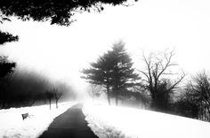 Dark Park by Richard Kownacki on 500px