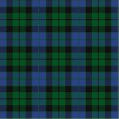 Clan MacKay tartan - my family's. Actually, we're Morgans, but the Morgans are in Clan MacKay.