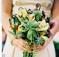 Creative Ways to Use Wedding Succulents